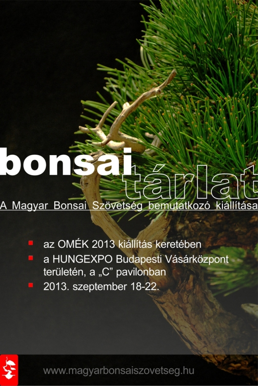 bonsai tárlat_2013.09.09