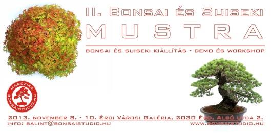 bonsai_suiseki_mustra_2
